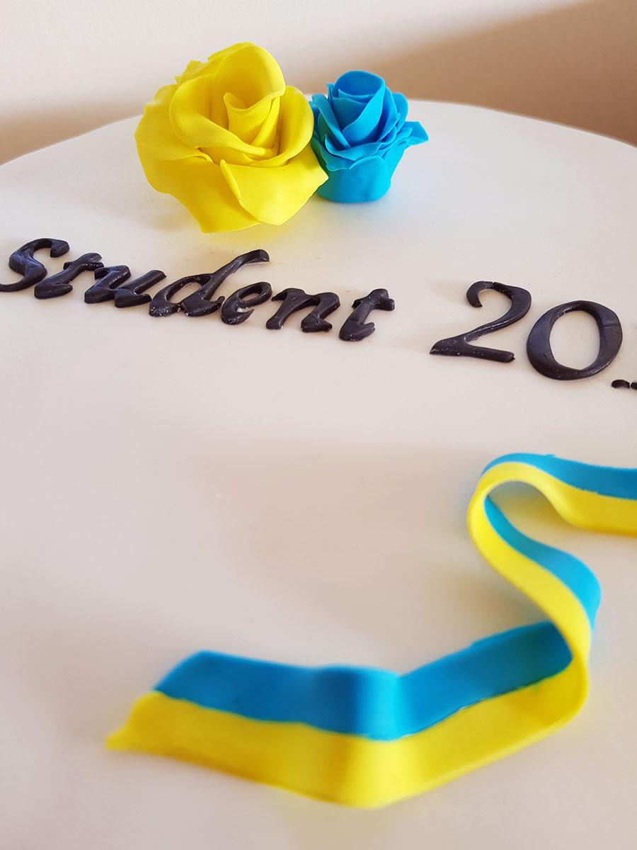 studenttårta cakes by camilla